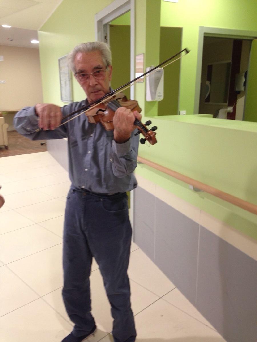5 violino